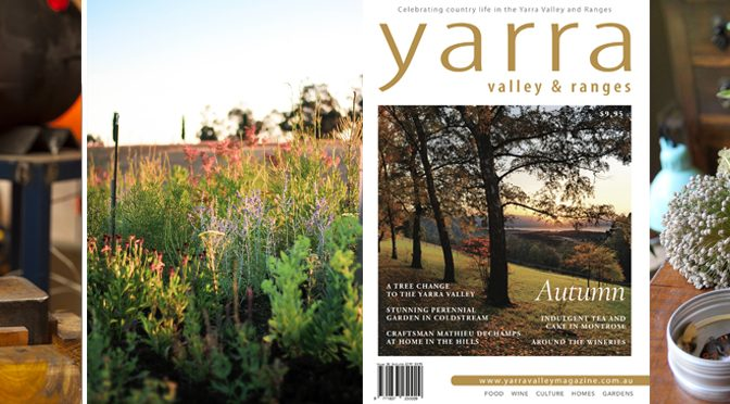 The Autumn edition is in stores now!