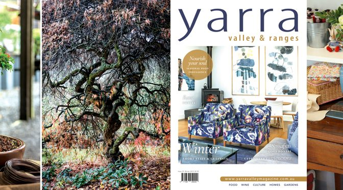 The Winter Edition is available now!